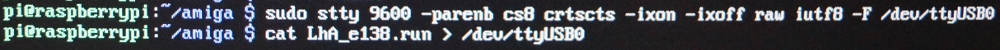 Datenübertragung Raspberry Pi