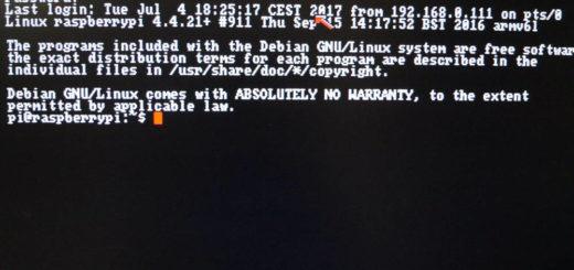 Amiga Linux Terminal