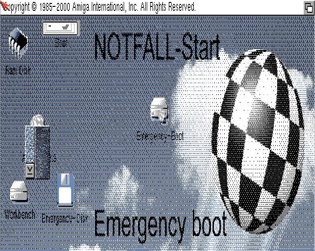 Notfall System